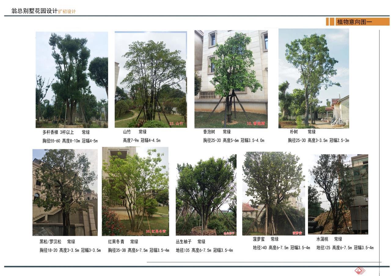 14 植物意向图 (1)修改