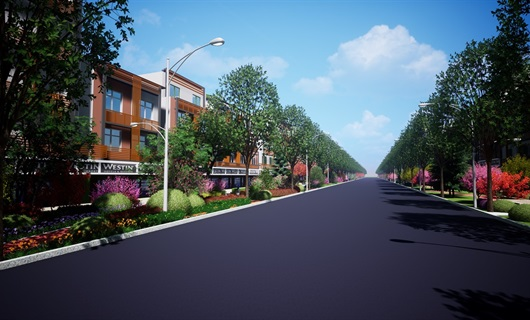 某道路帶狀綠地景觀設計