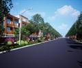 某道路带状绿地景观设计